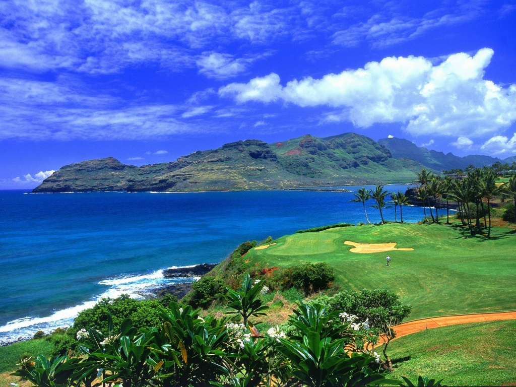 Golf-Hawaii-hawaii-23339685-1024-768